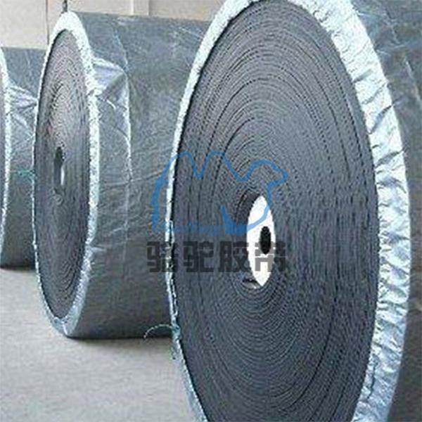 爬坡輸送帶_PVC爬坡輸送帶
